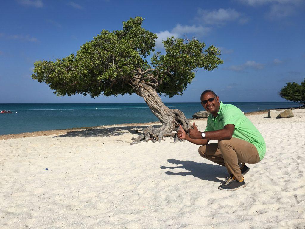 Divi Divi Tree Eagle Beach